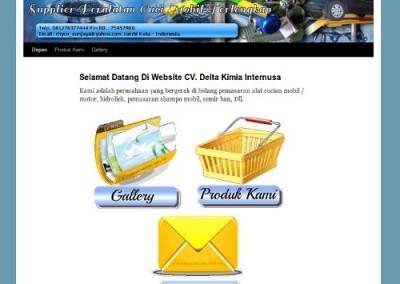 deltakimiainternusa.com